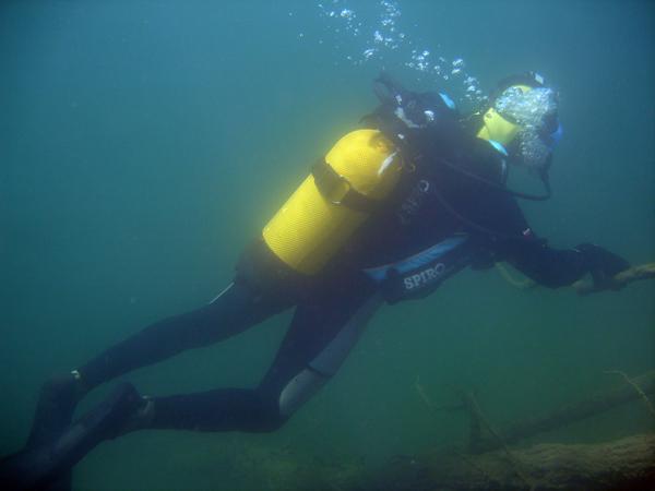 Plongeur en évolutions à Beffes